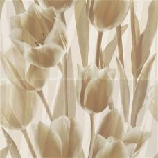 Панно Paradyz Coraline Tulipany бежевый 2x30x60 PRZ14002